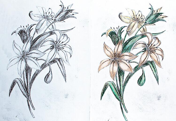 Цветок рис.2