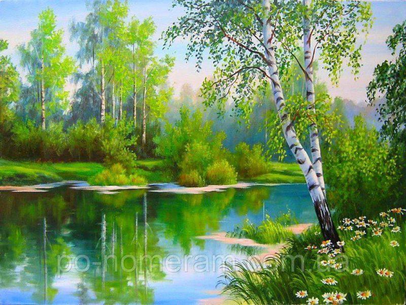 Берёза на берегу речки
